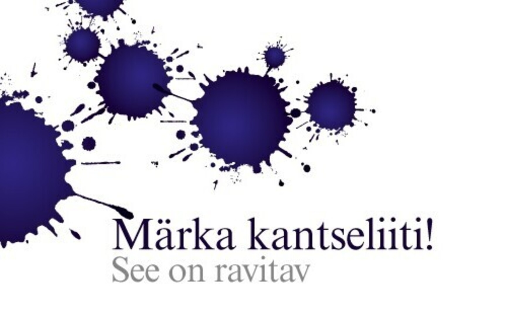 bb89c29b97b Eesti keele instituut kutsub üles märkama kantseliiti   kultuur   ERR