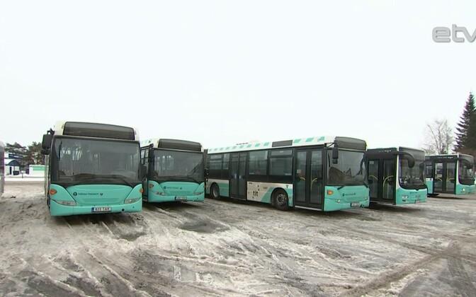Таллинские автобусы.