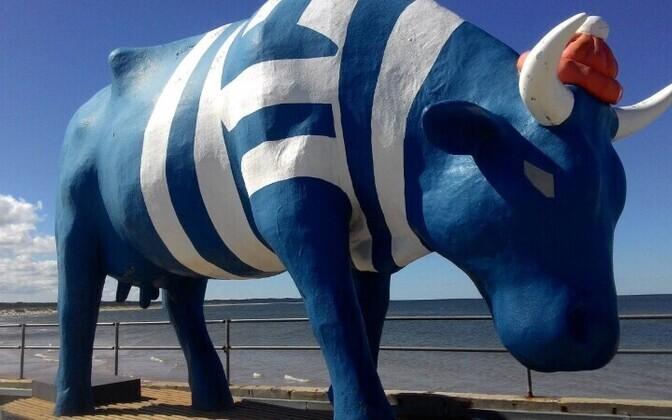 Корова в Вентспилсе.