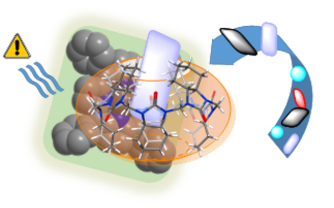 Selgitus, kuidas käelised molekulid puhastites töötavad.