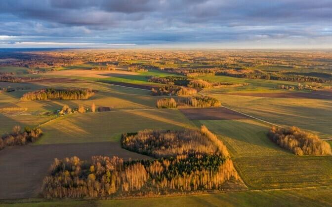 Juba täna tuleb seada siht, millist Eestit me tahame aastal 2035