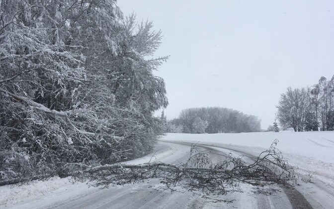 Heavy snowfalls overnight have left 13,000 electricity customers temporarily without power.
