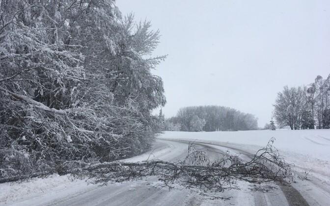 Raske lumi ja jää lõhuvad elektriliine