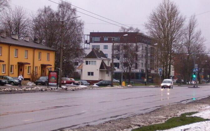 Самая длинная улица, названная в честь друга или дружбы, находится в Таллинне. Протяженность бульвара Сыпрузе составляет 4,6 км.