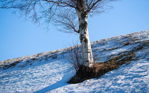 Päikeseline talveilm.