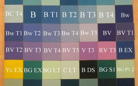 Eesti ja vene keele loetelu-, sorteerimis-ja nimeandmiskatses kasutatud 55 stiimulit.