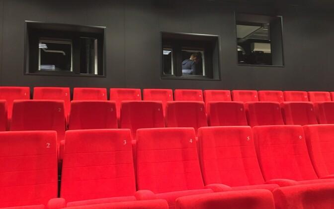 Кинотеатр в культурном центре Рапла.
