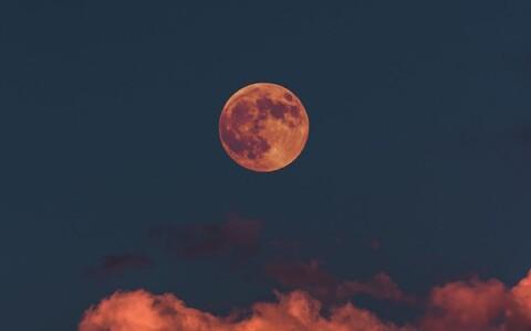 Iisreaeli maandur asub Kuud uurima.