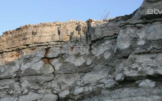 Исследование: 500 млн лет назад в Эстонии были цунами и землетрясения