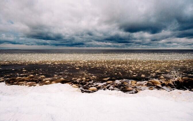 Sinimustvalge Eesti, Peraküla rand