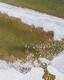 Mere loodud jää- ja lumeskulptuurid Stroomi rannas