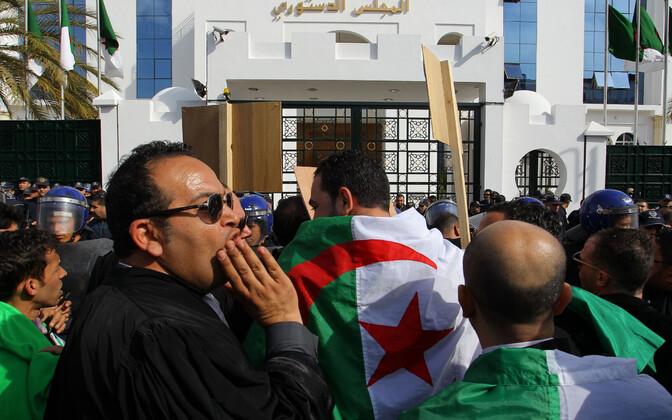 Alžeeria juristid 7. märtsil pealinnas meelt avaldamas.