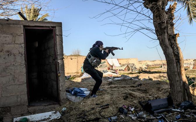 SDF-i võitleja.