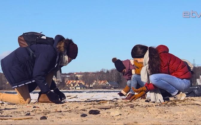 Иностранные студенты-энтузиасты регулярно собираются на совместные субботники.