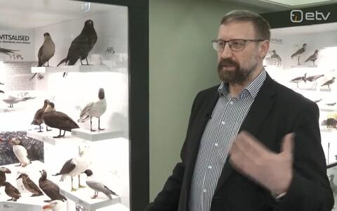Tartu Ülikooli loomaökoloogia professor Raivo Mänd.