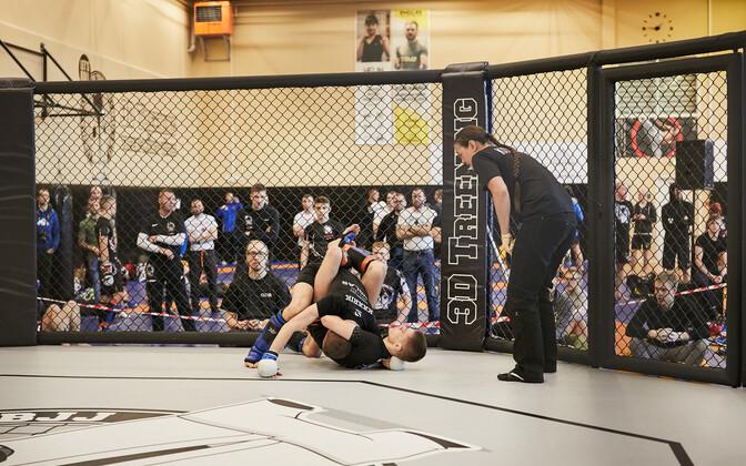 Eesti meistrivõistlused vabavõitluses