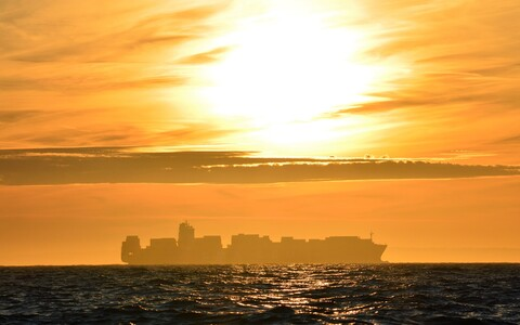 ajavahemikus 2014 kAastaks 2050 kasvab maailma laevakaubandusmaht vähemalt kolm korda, aga võimalik et isegi rohkem kui 12 korda.