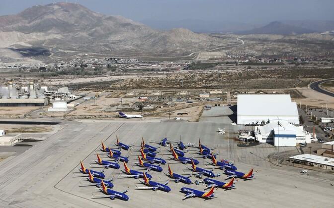 Lennufirma Southwest ajutiselt kasutusest ära võetud Boeing 737 MAX lennukid pargituna ühel California lennuväljal.