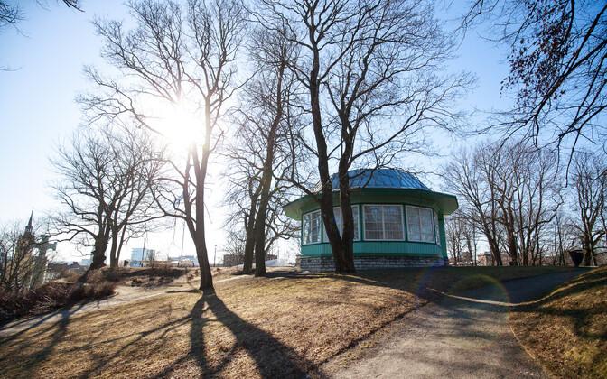 Весна в Таллинне.
