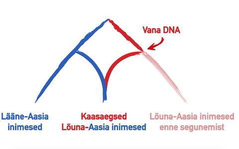 Kaasaegsete lõuna-aasialaste pärilikus materjalis on märke nii selles piirkonnas elanud eellastele (punane) kui ka lääne-aasialastele (sinine).