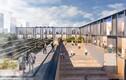Архитектурный конкурс на строительство нового теледома выиграл проект