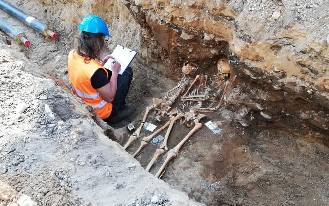 Скелеты в Раквере
