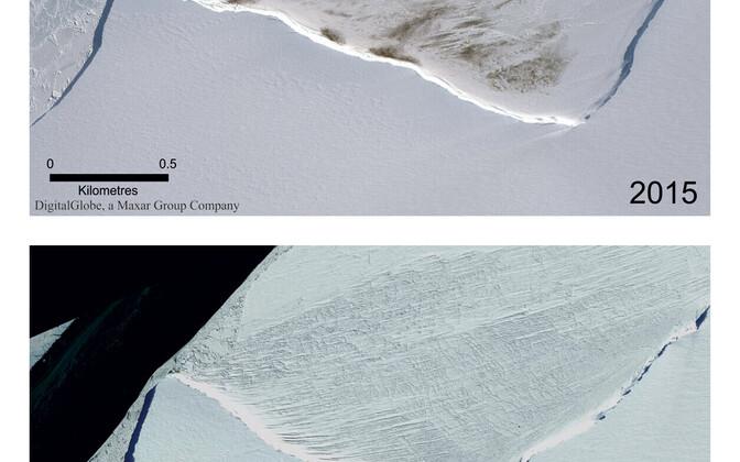 Satelliidipildid Halley lahe pingviinide alast 2015. aastal ja 2018. aastal. Pildi täissuuruseks vaatamiseks klõpsa fotol.