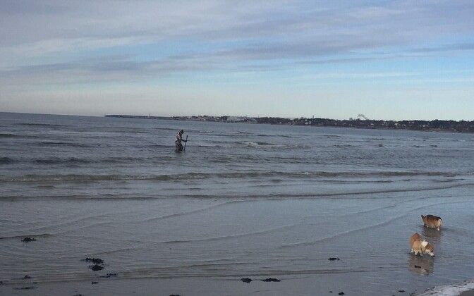Hobiotsija Pirita rannas.