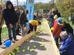 Благотворительное ралли теннисных мячей в Вильянди.