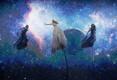 Eurovisiooni finaal, Austraalia