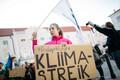 Климатический митинг на Тоомпеа.