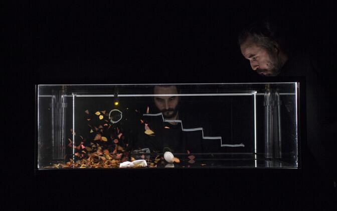 """""""Akvaariumi"""" peategelaseks on muna, kes trotsib nii lehti kui ka laineid"""