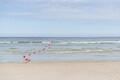 Pirita ranna avamine