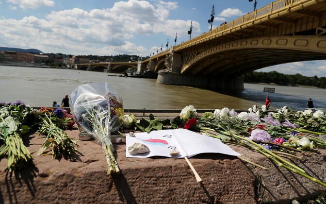 Budapesti laevaõnnetuse ohvrite mälestamiseks toodud lilled.
