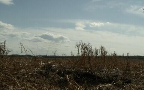 Мертвая земля в Валгамаа.