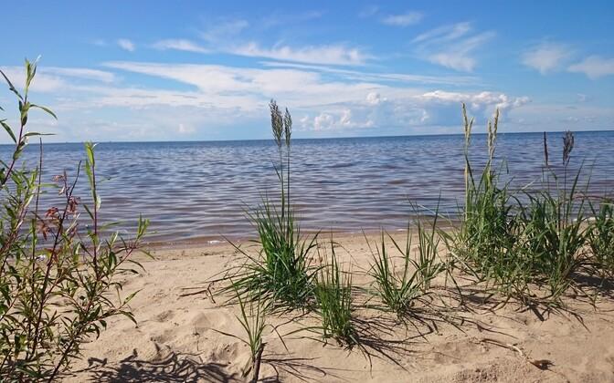 В регионе Чудского озера появится три новых порта, Иллюстративная фотография.