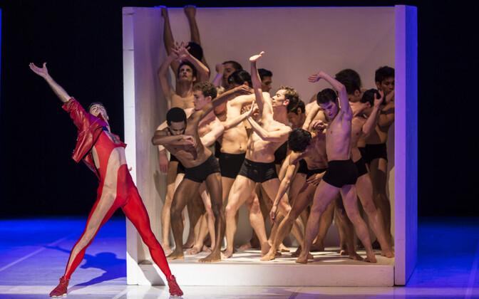 """""""Ballett For Life"""""""