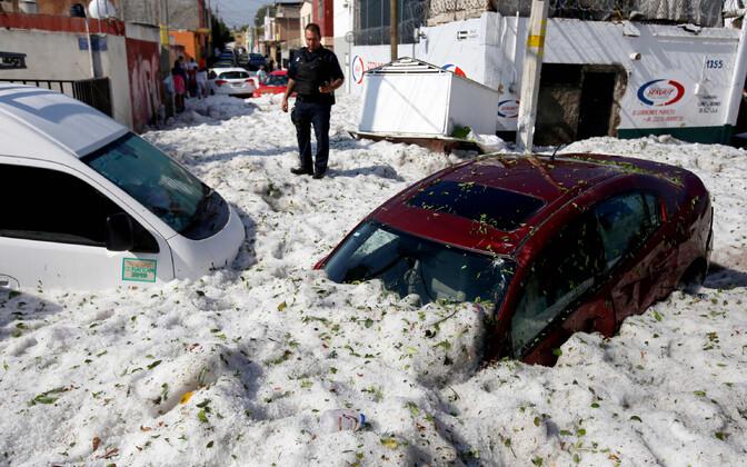 В некоторых местах толщина снежного покрова достигала полутора метров.