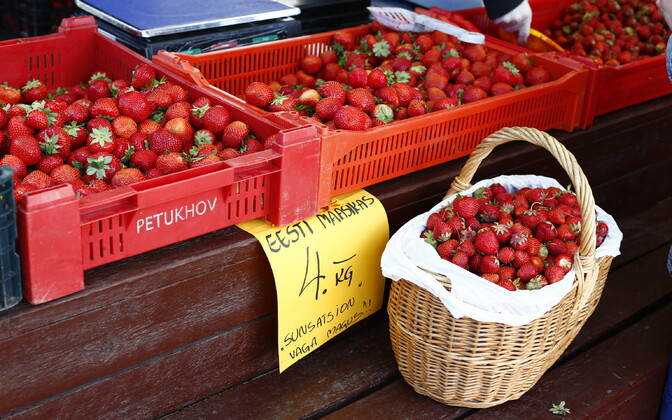 Strawberries for sale at an Estonian market. Earlier in the season, price per kg would have been lower.