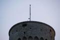 Laulupeo tuli jõudis Pika Hermanni torni