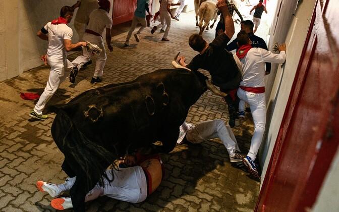 Pamplona härjajooks.