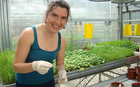 Uuringu juhtautor Lena Neuenkamp katsetaimi eksperimendi alguses potti istutamas.