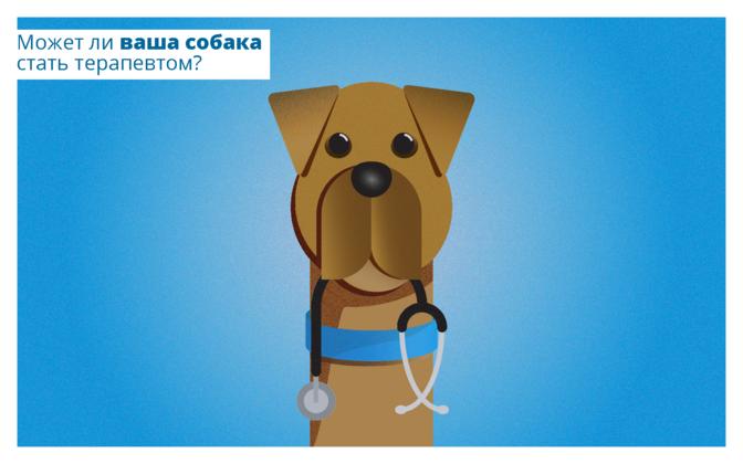 Может ли ваша собака стать терапевтом?