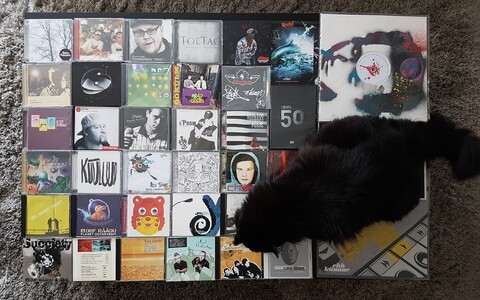 Rada7 founder Ivo Kiviorg's cat Muri, seen here with Estonian hip-hop albums, frequently graced the covers of the online portal's weekly music recommendations.