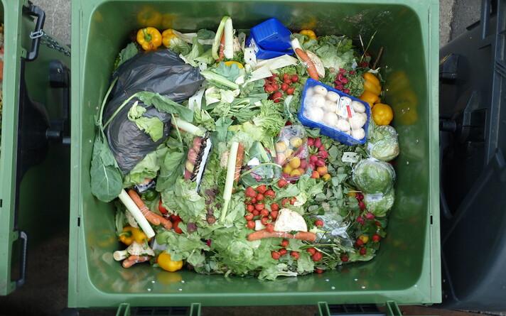 В Эстонии отходы воспринимают как проблему, тогда как они являются ресурсом.
