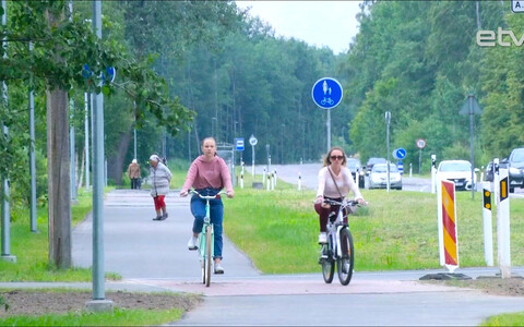 Велодорожки в Нарве.