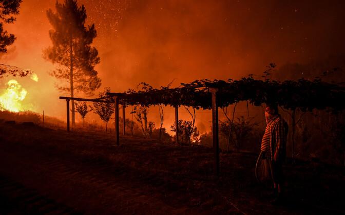 Лесные пожары в центральной Португалии вынуждают людей покидать свои дома.