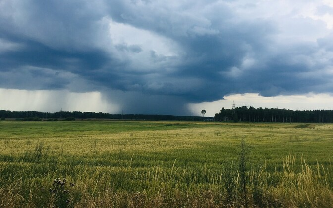 Estonia looks set to see a lot more rain in August.