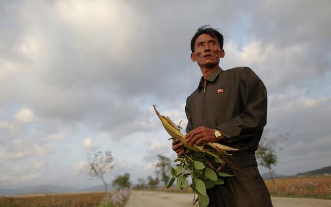 Põhja-Korea põllutööine 2011. aastal.