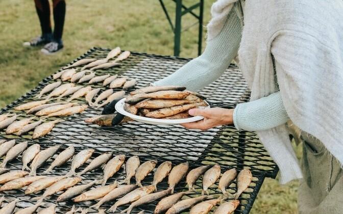Фестиваль Чудского озера, Ряпина.